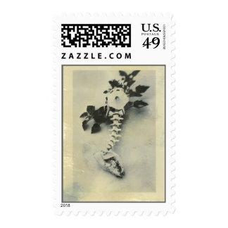 Datura Flower And Coyote Bones Postage