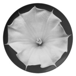 datura flower bud plate