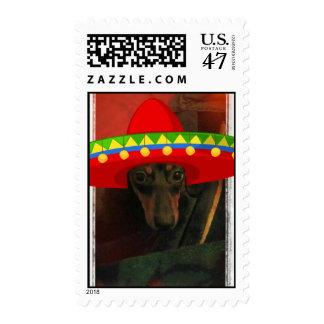 Dauchshund funny stamp