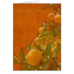 Daughter-in-Law Happy Birthday Spanish Orange Tree Cards