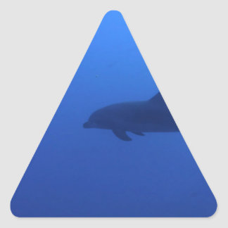 Dauphin Dolphin Customizable Triangle Sticker