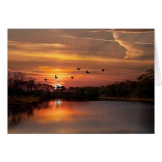 Dauphin Island Bird Sanctuary Card