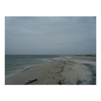 Dauphin Island Canvas #2 Posters
