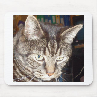 Dave's Watching You Mouse Pad