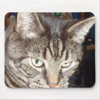 Dave's Watching You Mousepad