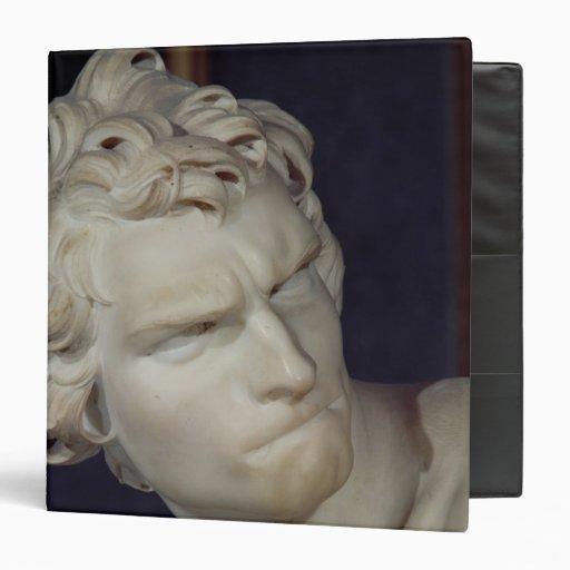 David, detalle de la cabeza, 1623-23