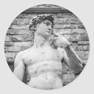 David (Michelangelo) Classic Round Sticker