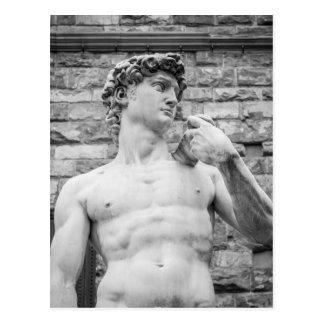 David (Michelangelo) Postcard