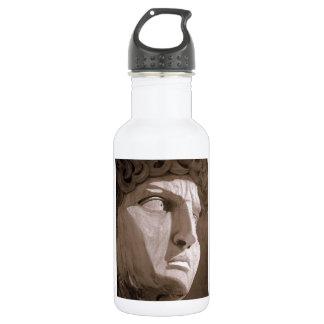 David Stainless Steel Water Bottle