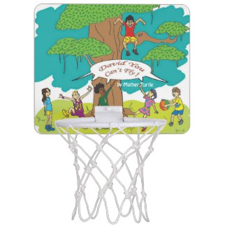 David You Can't Fly Mini Basketball Net Mini Basketball Backboard