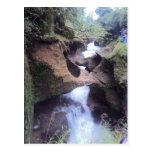 Davies Fall Pokhara Postcards