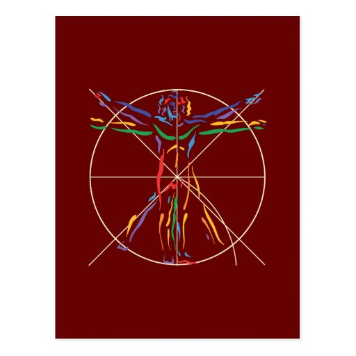 DaVinci Anatomy Man in Chakra Colors Postcard
