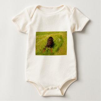 Davis Sullivan Bos Baby Bodysuit