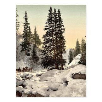 Davos, in winter, Grisons, Switzerland vintage Pho Post Card