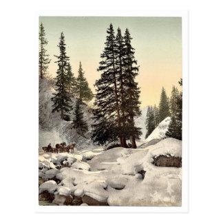 Davos, in winter, Grisons, Switzerland vintage Pho Post Cards