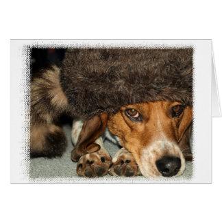 """""""Davy Crockett"""" Beagle card"""