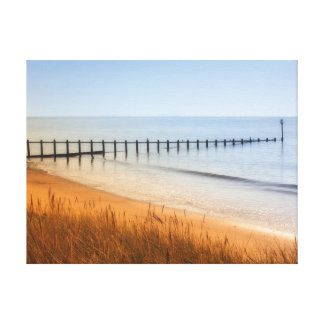 Dawlish Warren Beach Canvas Print