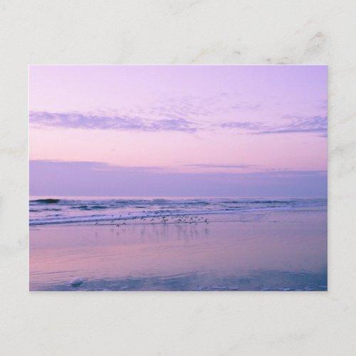Dawn at the Beach postcard