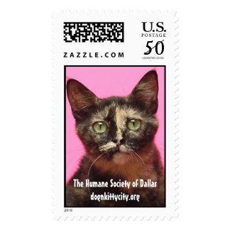 Dawn - dognkittycity.org Stamps
