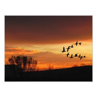 Dawn hablas arte fotografico
