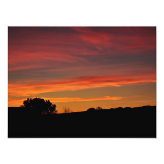 Dawn Foto