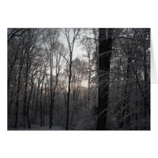 Dawning Light Stationery Note Card