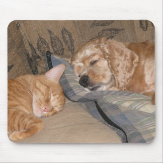 Dax and Chance Share Mouse Pad