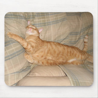 Dax Cat Napping Mouse Pads