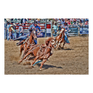 Day At The Rodeo Poster