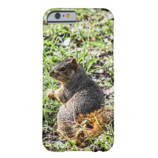 Day Dream Barely There iPhone 6 Case