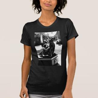 Day Dreaming Tee Shirts