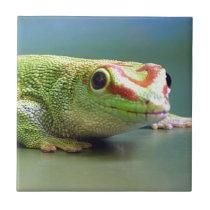 Day Gecko Ceramic Tile