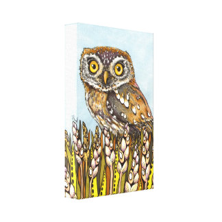 Day is full of joy - pearl-spotted owl stretched canvas print