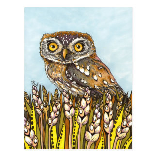 Day is full of joy - pearl-spotted owl postcard