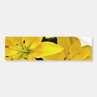 Day lilies  flowers car bumper sticker