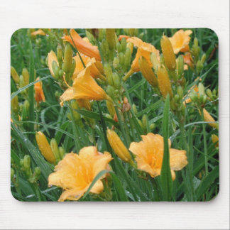 Day Lilly Mouse Pad