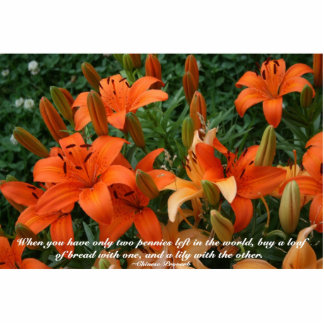 Day lily and quote- 2 x3 magnet Photo Sculpture