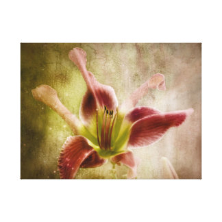 Day Lily Beauty Canvas Print