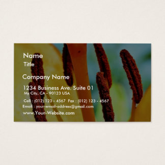 Day Lily Business Card