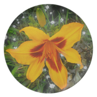 Day Lily Decorative Plate