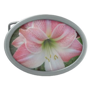 Day Lily Gear Oval Belt Buckles