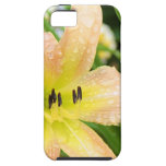 Day Lily iPhone Case iPhone 5 Case