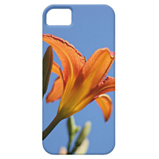 Day lily iPhone SE/5/5s case