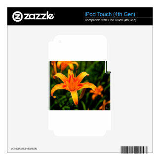 day lily.jpg iPod touch 4G skins