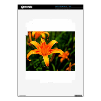 day lily.jpg skin for iPad 2