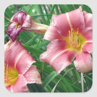 Day Lily Peach Pink Square Stickers