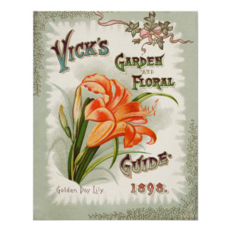 Day Lily Seed Packet Vintage Print