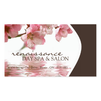 Day Spa and Salon Business Card