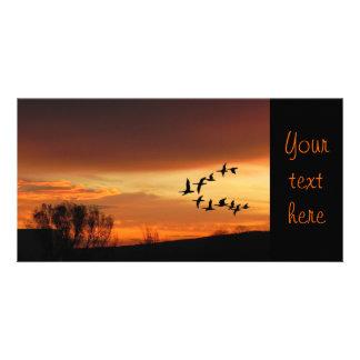 Daybreak Card