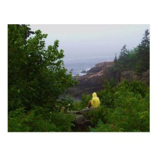 Daydreamer Postcard